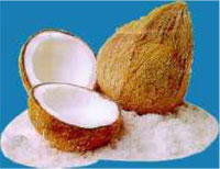 mesin pemarut kelapa 1 maksindo.org  Mesin Pemarut Kelapa